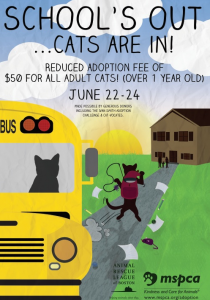 Cat Adoption Reduced Fee Event Poster