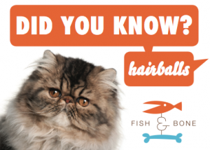 Did You Know:  Hairballs
