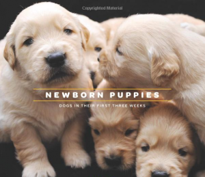 Mothers Day: I'm A Good Dog, and Newborn Puppies Book Signings